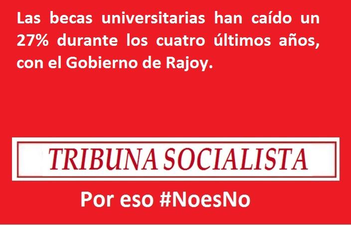 NoesNo5